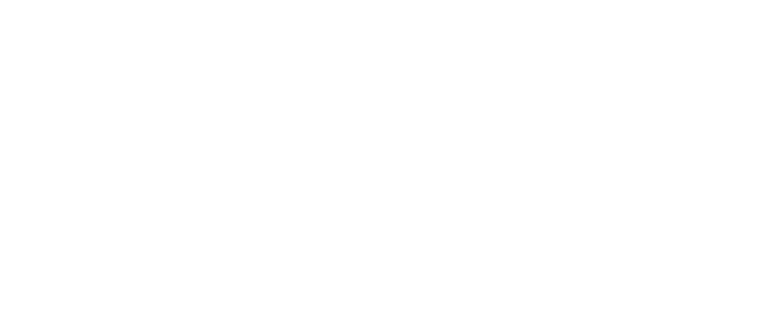 ENAE - Digital Meeting 2020