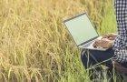Innovación industria agroalimentaria