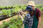 La tecnología agroalimentaria, un campo de mucho recorrido