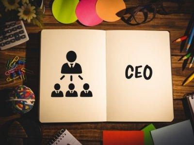 Roles de la empresa