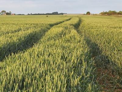 Próximo taller sobre Agricultura de Precisión en ENAE