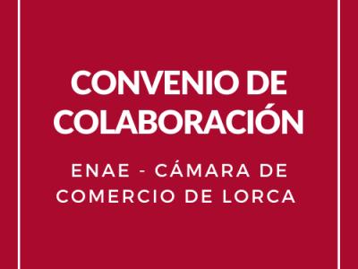 Nuevo acuerdo de colaboración entre la Cámara de Comercio de Lorca y ENAE