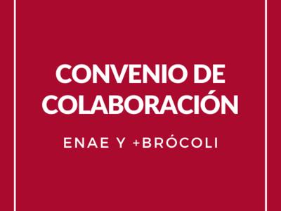Convenio Más Brócoli y ENAE