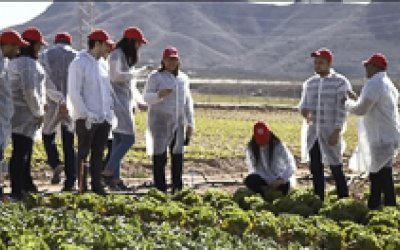 Fórmate y adquiere las habilidades y conocimientos necesarios para gestionar una empresa agroalimentaria de la mano de los mejores profesionales.
