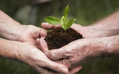 Liderazgo social y sostenible