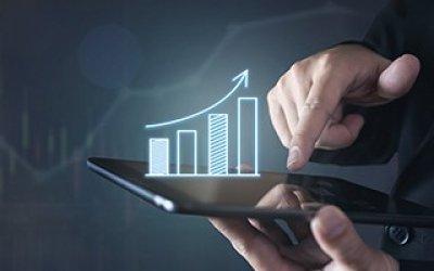 Viabilidad económico-financiera de proyectos de inversión en el sector y la empresa agroalimentaria