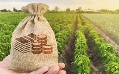 Asociacionismo agroalimentario