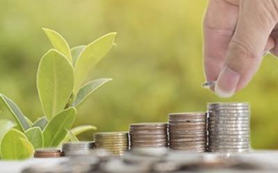 Gestión y control económico en la empresa agroalimentaria