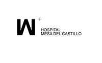 Logo Mesa del castillo